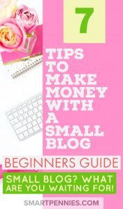 beginners guide 7 tips to make money with a small blog . Have you started your new blog and you are not sure how you are going to make money with it? Then check out these 7 tips on how you can monetize your blog.