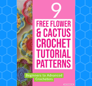 9 Crochet Flower and Cactus Patterns for beginners to advanced