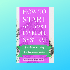 The Cash Envelope System: a Guide for Beginners to help you save money