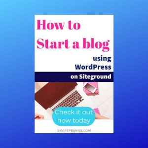 How to start a Blog and make money using WordPress